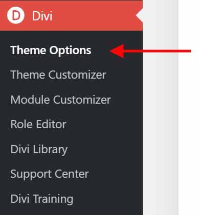 Divi Theme Options Menu